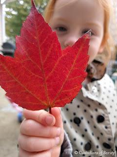 Autumn Lovin' | by CustodiansofBeauty.blogspot.com