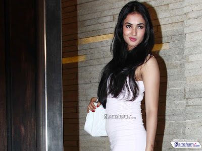 Top Most Beautiful Indian Model Sonal Chauhan Hd Photos