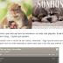 Como incorporar uma playlist do spotify no blogger