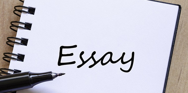 Dissertation essay writing service hiring program