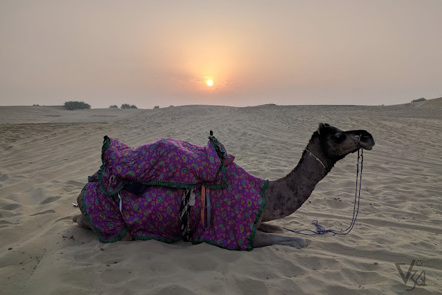 Sunrise at the Sand dunes of Kanoi, Thar desert