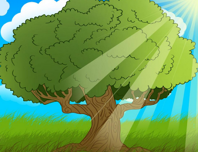 Gambar Pohon Kartun Oak Tree Cartoon Images
