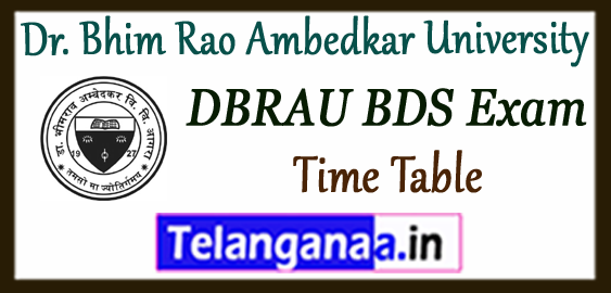 DBRAU Dr. Bhim Rao Ambedkar University BDS -1st 2nd 3rd 4th Exam Time Table Admit Card  2017-18