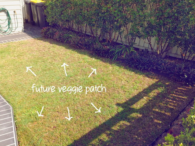 home garden lawn to become a new veggie patch