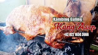 kambing guling cimahi