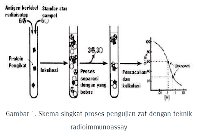 Prinsip Kerja Radioimmunoassay