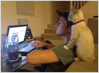 http://mustahabbah.blogspot.com/2016/07/4-manfaat-memelihara-kucing-bagi.html