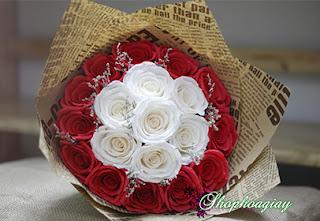 hoa hồng giấy đỏ và trắng