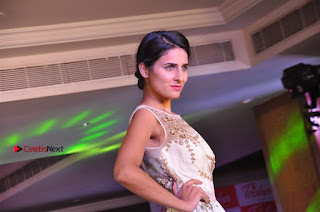 South Indian Celebrities Pos at Love For Handloom Collection Fashion Show  0151.jpg