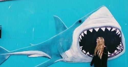 The great white shark / El gran tiburon blanco: grafiti de tiburon ...