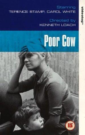 Poor Cow