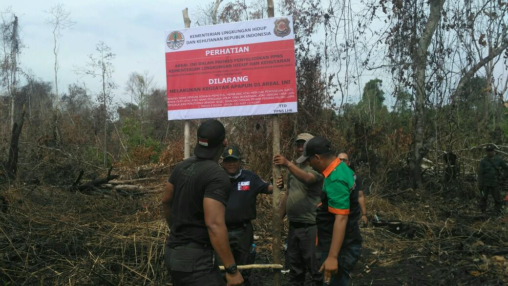 Lahan Terbakar Milik Dua Perusahaan Kembali Disegel