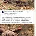 MPNAIJA GIST:Fulani Herdsmen Kill Man In His Farm In Oyo (Graphic Photos)
