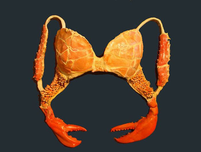 Unusual bras