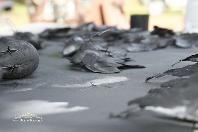 Spray Paint Birds for Halloween, Bliss-Ranch.com