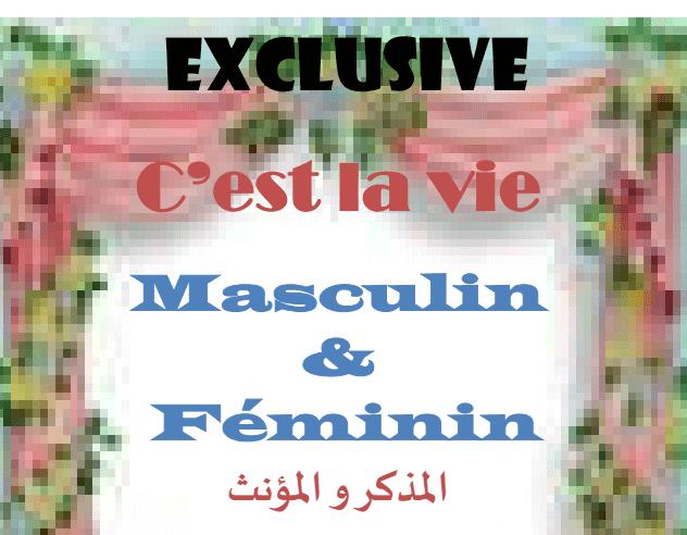 ملزمة ,لغة فرنسية ,المذكر والمؤنث, مذكرة فرنساوى,French masculine feminine
