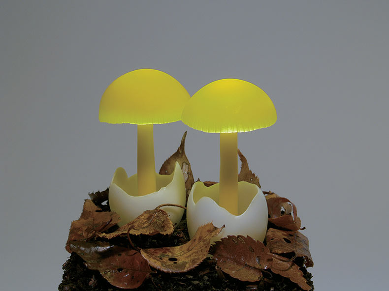 Lámparas de resina de hongos incrustadas con LEDs sobre madera flotante por Yukio Takano