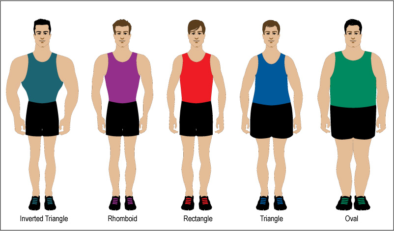 Body Types for Different Sports