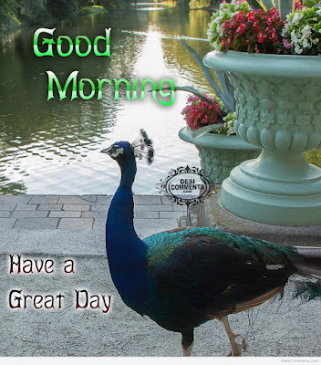 Good-Morning-Have-A-Great-Day-Wishes-Quotes-With-Picture