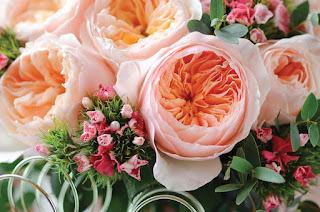 toko bunga jakarta | Hub 082262222989