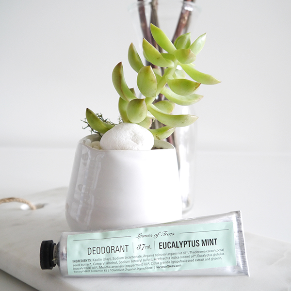 Leaves of Trees natural deodorant in Eucalyptus Mint