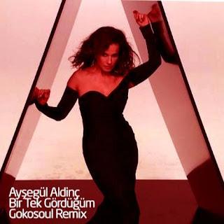Ayşegül Aldinç - Bir Tek Gördüğüm (Gokosoul Remix)