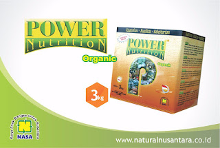 POWER NUTRITION PUPUK NASA