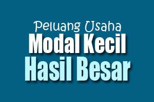5 Peluang Usaha Rumahan Modal Kecil Pilihan Terbaru 2016 lisubisnis.com bisnis muslim