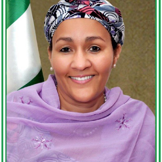 Image result for Amina Mohammed