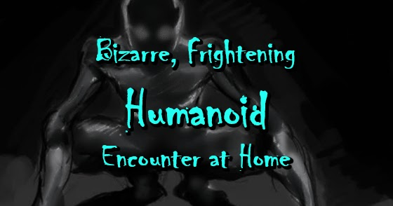 Bizarre, Frightening Humanoid Encounter at Home