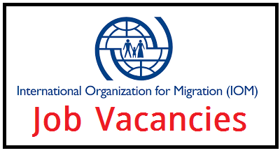 Job Vacancies International Organization for Migration 2020 - IMO Job Opportunity 2020