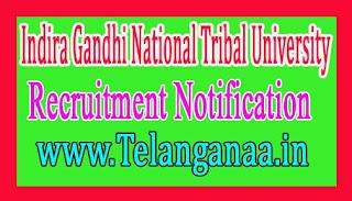 Indira Gandhi National Tribal University – IGNTU Recruitment Notification 2017