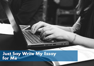 Just Say Write My Essay for Me