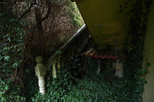Chalet abandonado y un macabro descubrimiento