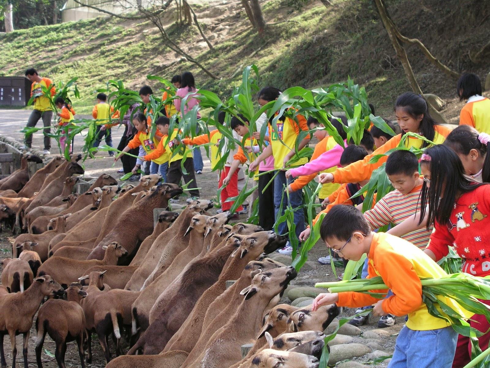 ITF台北國際旅展官方部落格: 飛牛牧場精心包裝【物美價廉】極優質特惠