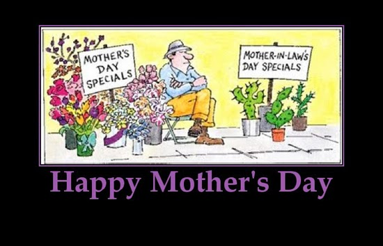 Daughter In Law Mothers Day Quotes: Funny Son In Law Quotes. QuotesGram