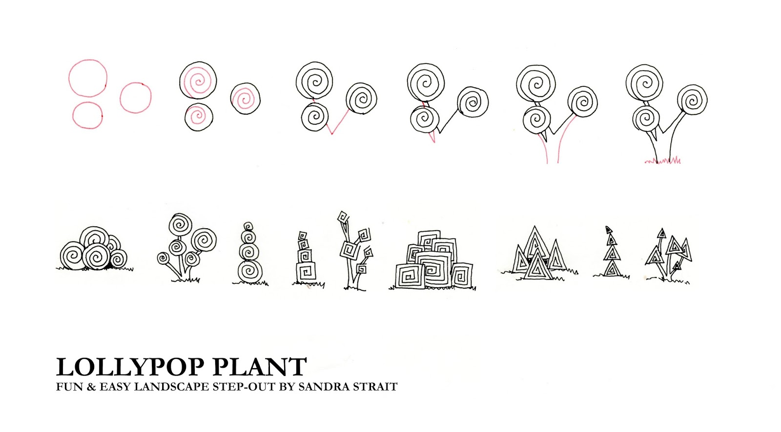 lollipop plant fun easy landscape step out funandeasylandscape step out zensations zebrapenus