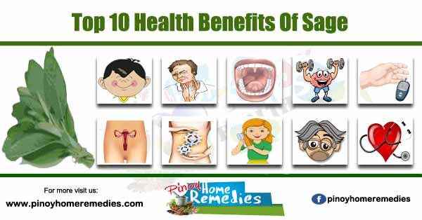Top 10 Health Benefits Of Sage