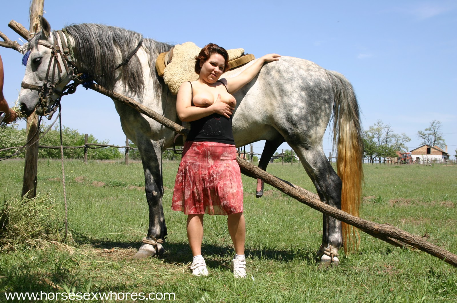 Maturelover Mature Love Horse-2614