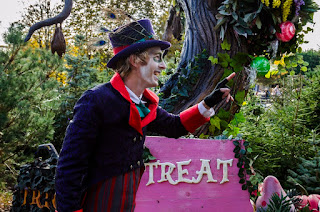 Trick or Treat Wood at Chessington World of Adventures Resort