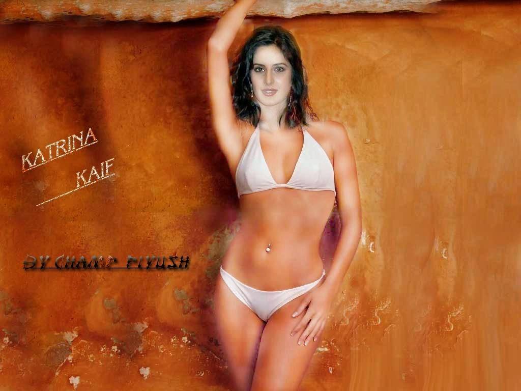 Fotos de bikini calientes de katrina kaif