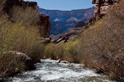 Hiking up Thunder River, Colorado river Grand Canyon Chris Baer
