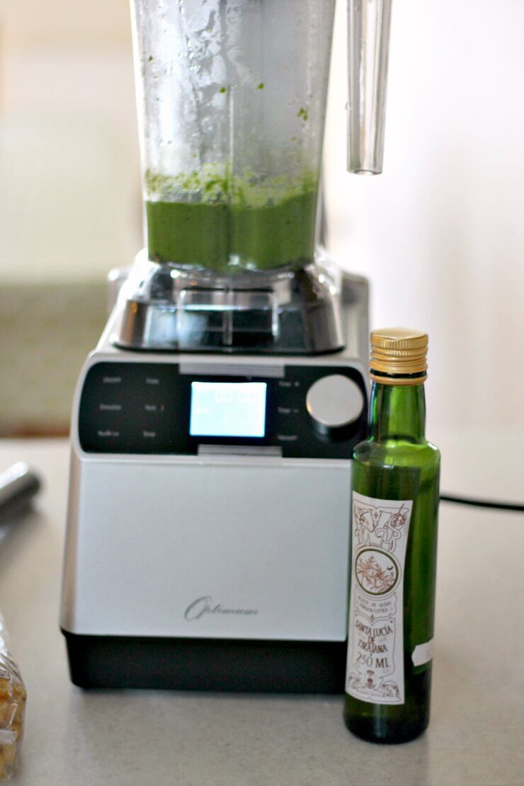 Kale Pesto in the Optimum Vac2 Air Vacuum Blender