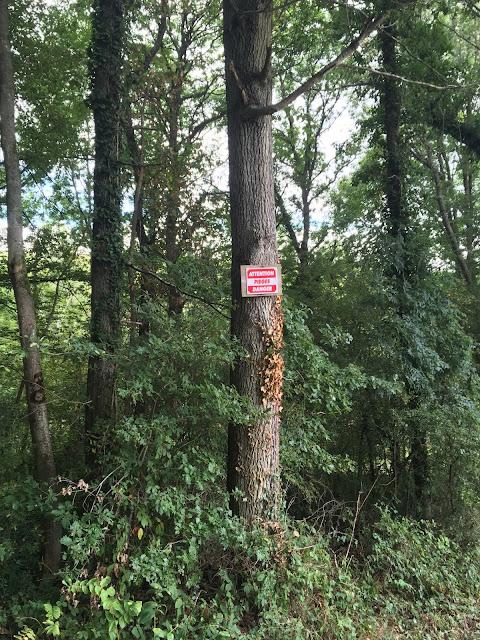 pancarte d'avertissement de présence de pièges de chasseur avant le bois