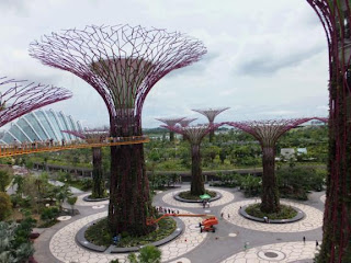Supertrees, Gardens by the Bay, Singapore