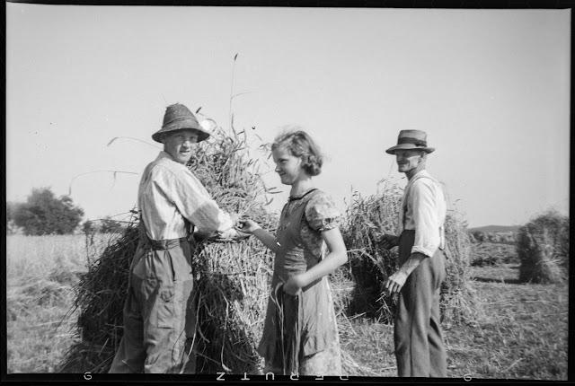 Getreideernte in Oberbayern - Gars am Inn - 1930-1950