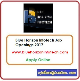 Blue Horizon Infotech Hiring Freshers BDO Jobs in Kochi Apply Online