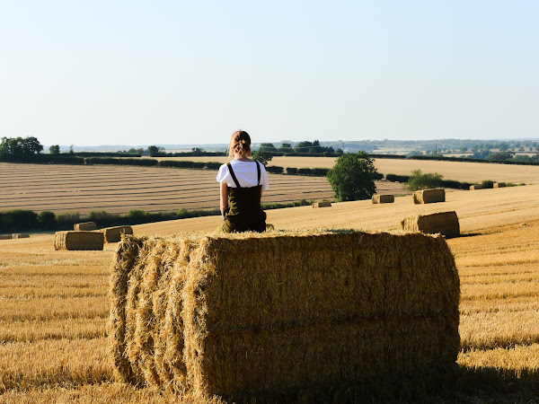 """The Farmgirl"""