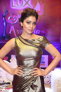 Shreya Saran in Skin Tight Golden Gown ~  Exclusive