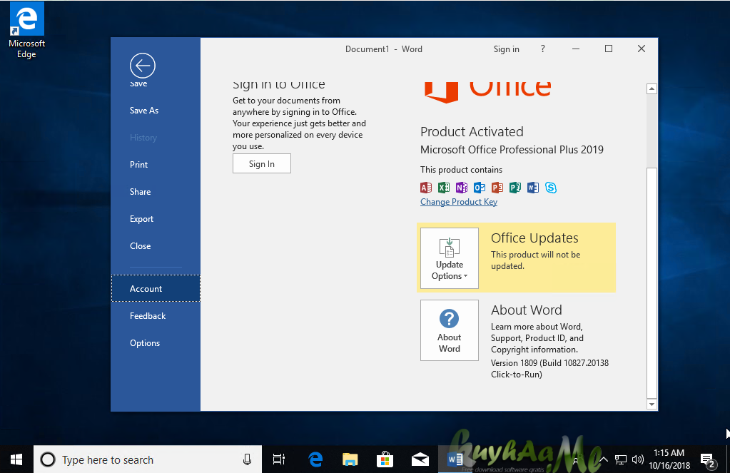 windows 10 incl office 2019